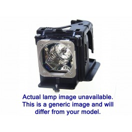 Np-p502w - lampe complete hybride